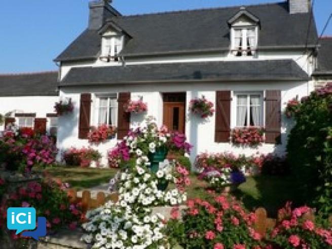 Le Grand Hortensia centre Finistère Pleyben