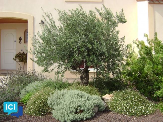 jardinier paysagiste bois de chauffage