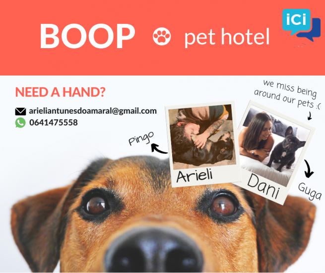 Pet sitter Dog sitter Pet Hotel